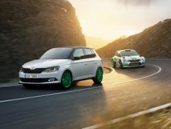 Škoda završila úspěšný rok modelem s nejsilnější motorizací